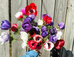 Farmer's Market Flowers Gallery